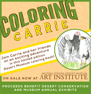 Coloring Carrie - Join Carrie and her friends on an exciting adventure in this limited edition Desert Museum coloring book! On sale now from the Art Institute. Proceeds benefit desert conservation and museum annual exhibits