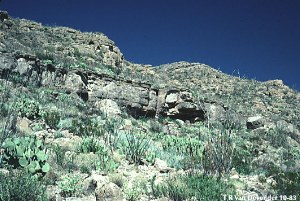 Chihuahuan Desert image gallery