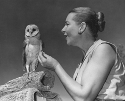 Natie Gras and barn owl