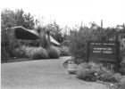 Thumbnail of Demonstration Garden 1963 - 1971 - Native Plants for Local Gardens