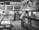 Thumbnail of Small Animal Rooom 1950s