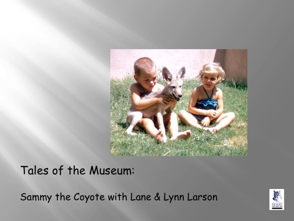 Sammy the Coyote with Lane and Lynn Larson