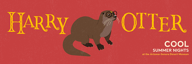 Harry Otter graphic