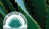 Agave with Festival Logo