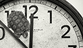 Tortoise on clock face