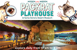 Photo of Packrat Playhouse