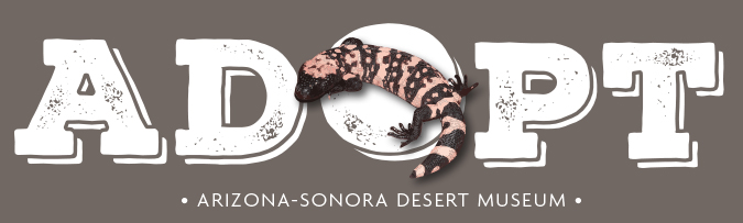 Gila Monster Adoption Center
