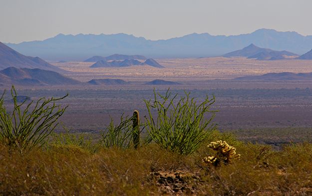 Lava field at Pinacate Biosphere Reserve