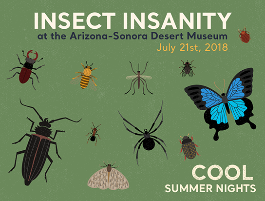 Insect Night - open till 10pm - July 21